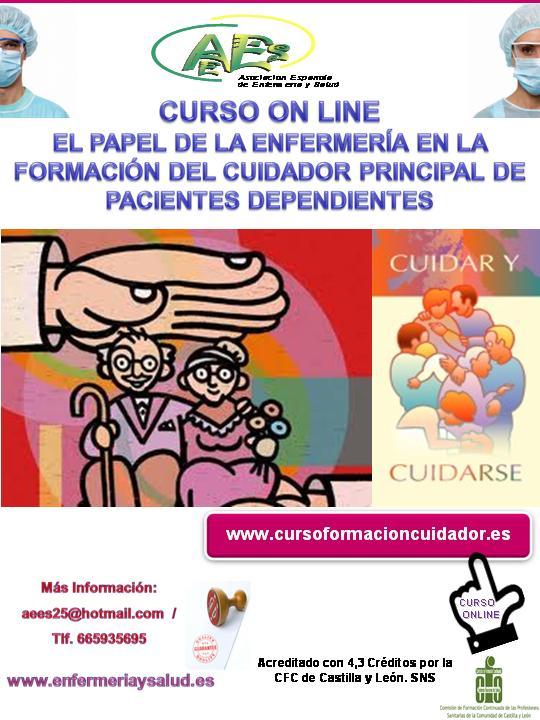 Curso El Papel de la Enfermería en la Formación del Cuidador Principal de Pacientes Dependientes