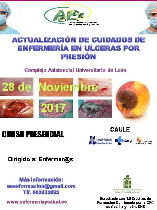 Curso de Actualización de Cuidados de Enfermería en Úlceras por Presión (U. P. P.) (2ª EDICIÓN)
