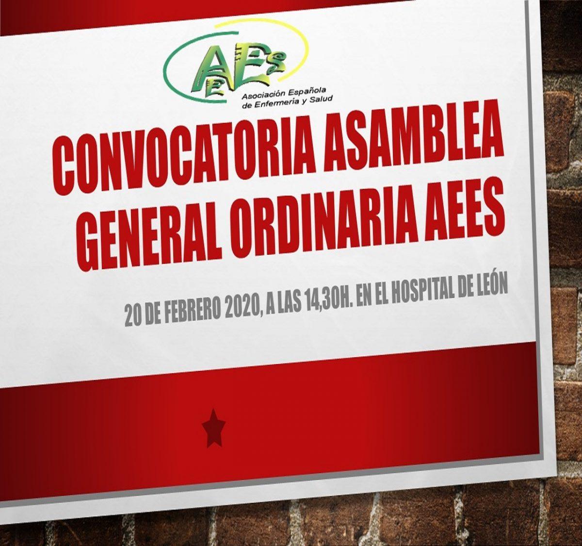 CONVOCATORIA ASAMBLEA GENERAL ORDINARIA AEES
