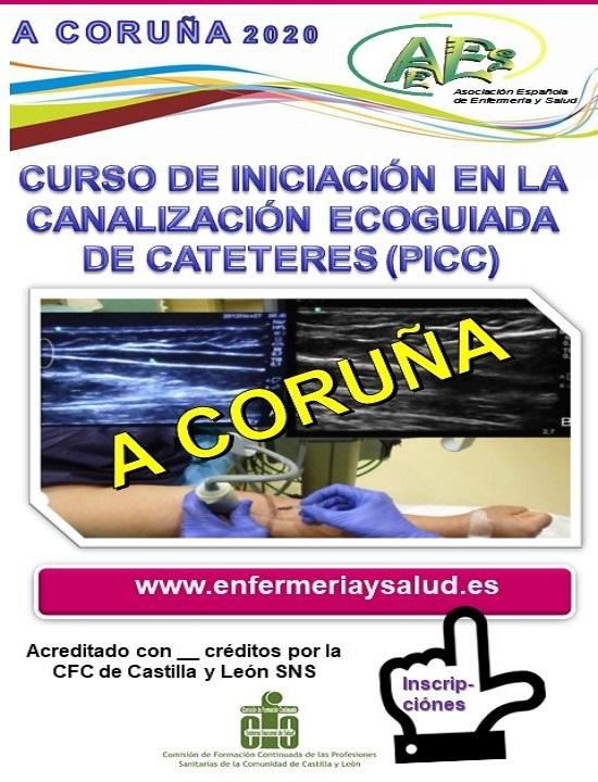 CURSO DE INICIACIÓN EN LA CANALIZACIÓN ECOGUIADA DE CATETERES (PICC)  A CORUÑA